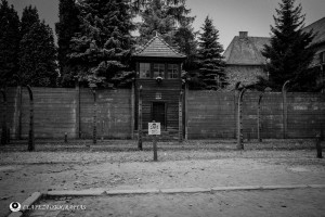 Auschwitz 06