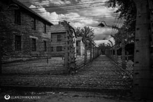 Auschwitz 09